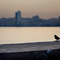 Cuba: ¿el país deseado tendrá que esperar?